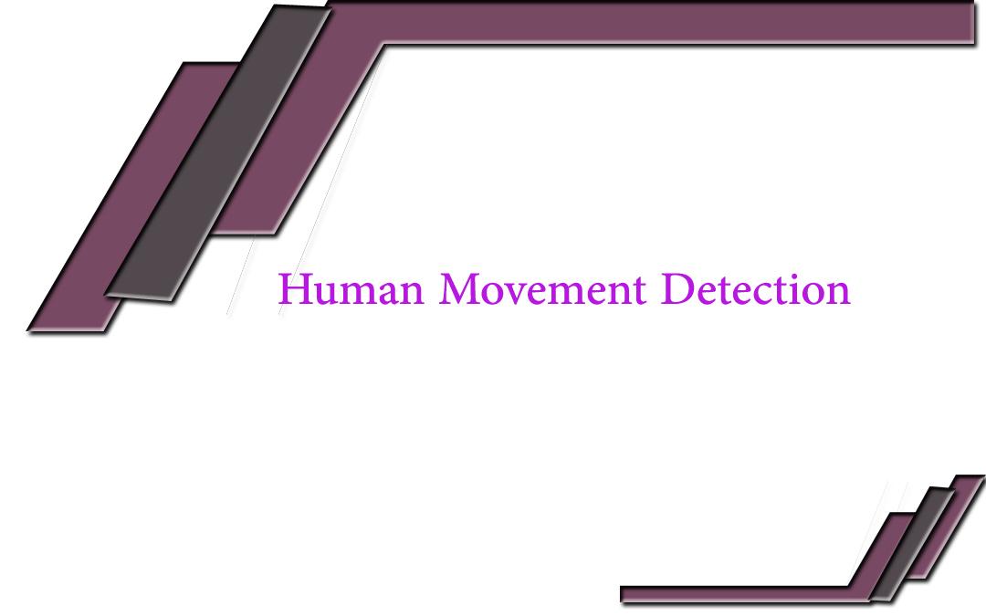 Human Movement Detection