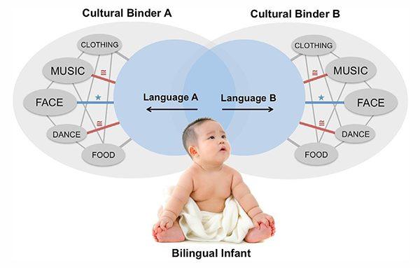 Bilingual Intervention In Bilingual Children With ASD